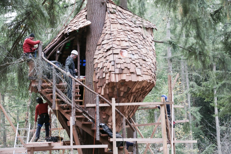 TREEHOUSE MASTERS 3