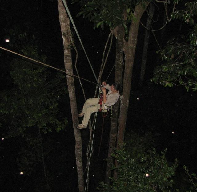 În jungla amazoniană, cu tiroliana pe timp de noapte