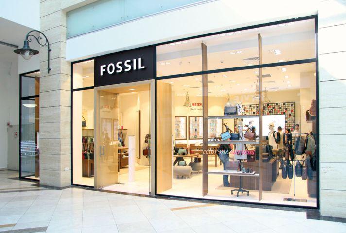 Fossil în România