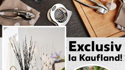 Kaufland lansează două mărci proprii de produse pentru casă și bucătărie