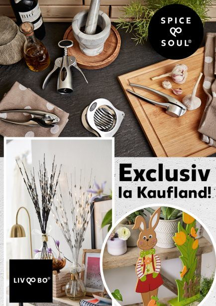 kaufland obiecte de bucatarie si home design