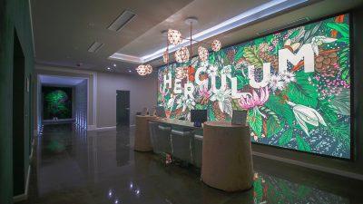 Afrodita Resort & Spa Băile Herculane câștigă marele premiu al industriei SPA din Europa