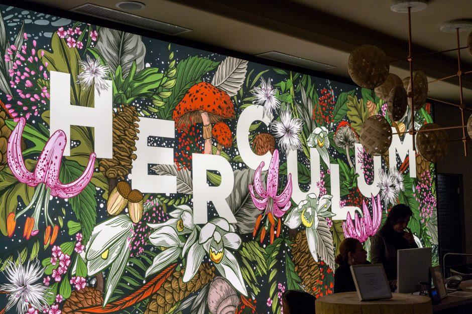 Afrodita hotel Herculum spa Baile Herculane