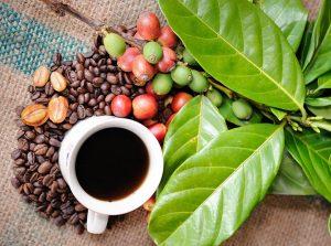 Ce nu ştiai despre cafea - 7 curiozităţi