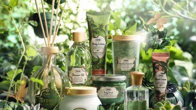 Matcha, ingredientul minune din cea mai nouă colecție Sabon
