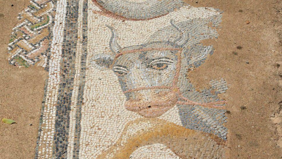 dion mozaic