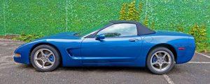 Mașini rare Licitația de eleganță