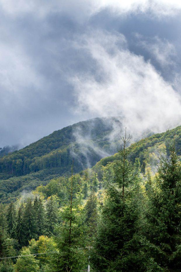 Balvanyos peisaj de munte cu brazi, ceata si nori
